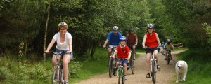 Cycling with family at forest